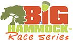 Virtual Strides Virtual Race - Big Hammock Race Series