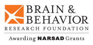 Virtual Strides Virtual Race - Brain & Behavior Research Foundation