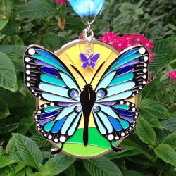 butterflymedalphotosquare